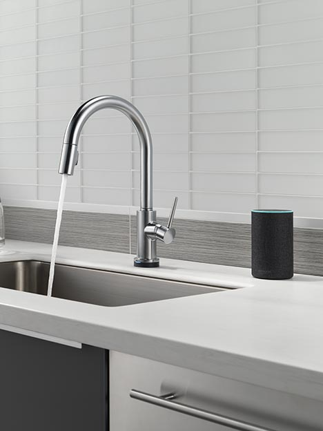 voice activated faucet